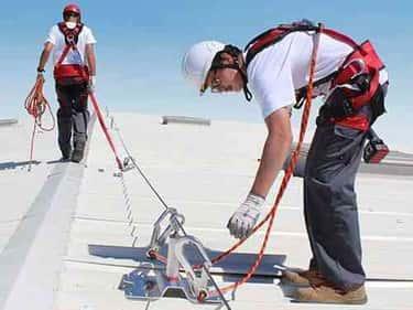 pest solution services